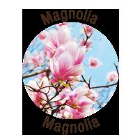 loghetto-magnolia