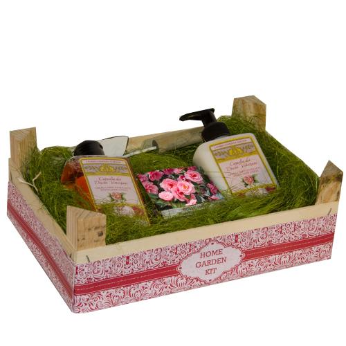 Home garden kit Camelia