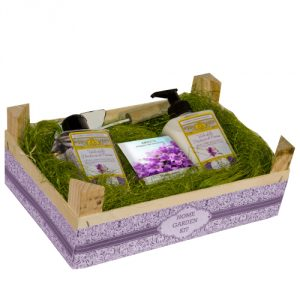 Home garden kit Viola