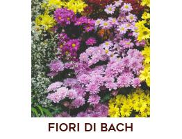 Estratto di Fiori di Bach