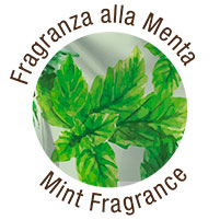 Fragranza Menta