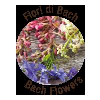 loghetto-fiori-di-bach